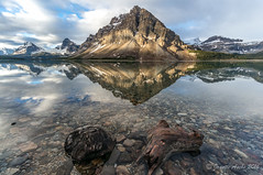 Bow Lake (NettyA) Tags: 2014 alberta banffnationalpark bowlake canada canadianrockies northamerica sonynex6 clouds lake reflection sunrise travel mtcrowfoot rocks stones light landscape