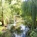 Tierfontein Day 2 066