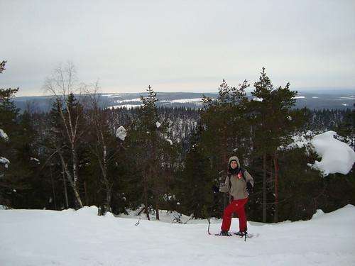 El parque nacional de Koli, cerca de Joensuu