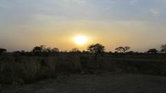 West Africa-2548