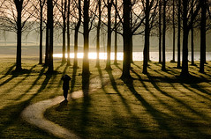 Into the Light (genf) Tags: morning trees light sun man reflection silhouette early bomen walk sony amstel wandeling weerspiegeling reflectie ouderkerk tmt a700 ouderkerkerplas