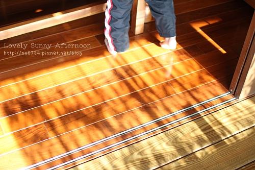 20110406_SunnyAfternoon_0122 f