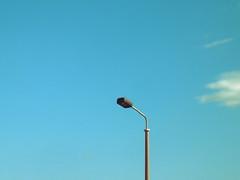 prenzlberger lichtbox | berlin | 2011 (feliksbln) Tags: berlin lampe streetlamp himmel wolke lampara blau foco lampera rvbre