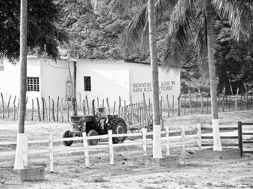 En el ejido Cuauhtémoc (29)