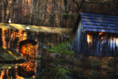 Tunnel (dbnunley) Tags: morning light reflection mill canon spring pond ducks hdr blueridgeparkway mabrymill 60d