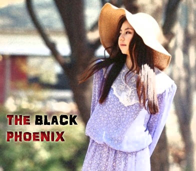 (10-5) The Black Phoenix by daragonlai