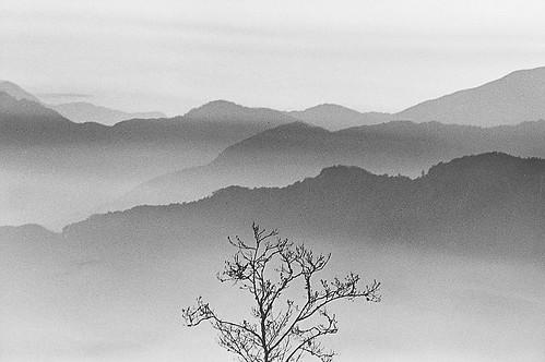 阿里山晨景-2005阿里山