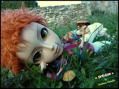 """Spéléon"" Taéyang custom by Tsubasa Paradis (Tsubasa Make up doll) Tags: doll picture charleston fairy pullip zodiac custom fée lutin spéléon taéyang tsubasaparadis"