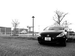 Peugeot 307 @ Yokohama NewPort