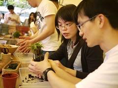 可以動手製作的「創意苔玉球」。民眾用雙手將水苔、土壤、植栽進行捏塑,創造獨一無二的桌上花園。