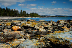 The Seawall (SunnyDazzled) Tags: ocean park trees sea seascape beach wall clouds spring rocks colorful bright seawall national np acadia