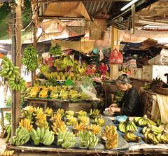 comercio[hoian]001 (b.project) Tags: travel commerce vietnam hoian frenchcolony massimillaphotography