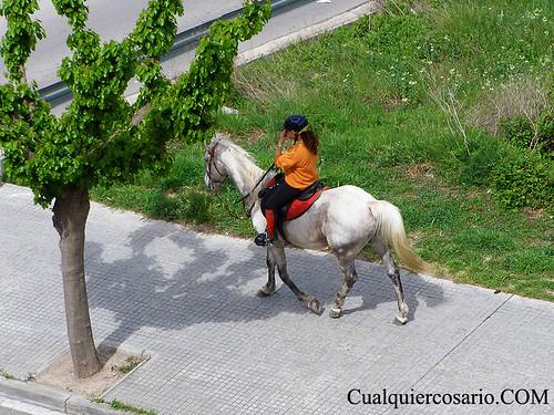 Equino vía I