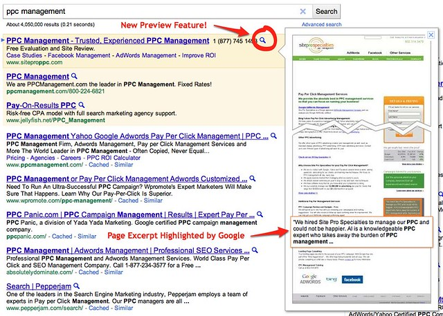 Google AdWords Preview Feature