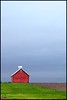 Illinois Barn after the rains (Bettina Woolbright) Tags: blue red barn illinois farm country 85l illinoisbarn 5d2 bettinawoolbright 5d285l