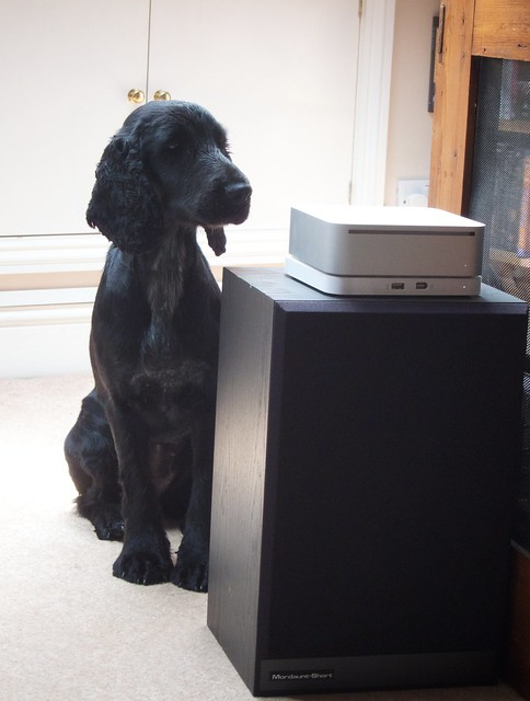 Her Master's Voice
