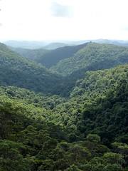 The canyon in the park (TrekSnappy) Tags: australia roadtrip queensland springbrooknationalpark