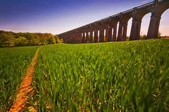 Ouse Valley Viaduct (simon.anderson) Tags: longexposure grass nikon haywardsheath structure viaduct balcombe sigma1020 balcombeviaduct simonanderson nd110 ousevalleyviaduct d300s 46seconds