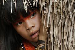 (Lucille Kanzawa) Tags: brazil girl brasil indian xingu menina ndia tocadaraposa brazilianindian ndiobrasileiro ndiabrasileira ndiadoxingu