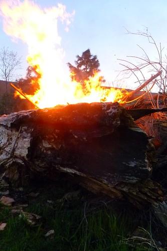 Beltaine bonfire