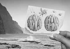 9 - Pencil Vs Camera for Art Official Concept (Ben Heine) Tags: ocean blackandwhite horse cliff mer mist inspiration seascape mountains art water monochrome silhouette rock fog stone paper cheval photography freedom volcano fly seaside crazy jump escape hand absurd drawing earth mixedmedia surrealism pegasus main creative wave run course illusion transparency photoediting planet terre layer reality match imagination series sciencefiction escher unicorn vague papier falaise rocher uranus saut asteroid combination meteorite roche licorne capeverde postprocessing plante flyingobject couche theartistery fantasyworld renmagritte saturne pgase benheine pencilvscamera artofficialconcept