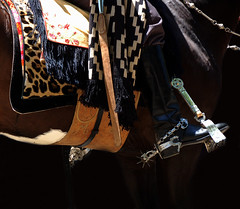 Nombrando las pilchas... (Eduardo Amorim) Tags: horse southamerica argentina leather criollo caballo cheval spur spurs artwork whip sperone poncho cavallo cavalo gauchos pferd pampa loro riendas pala apero gaucho staffa leatherwork cuero amricadosul loros stirrup carona cuir gacho estribo amriquedusud provinciadebuenosaires recado gachos couro sudamrica sanantoniodeareco matras esporas cuoio suramrica amricadelsur areco sdamerika crioulo caballoscriollos pelego criollos espora pilchas espuelas pilchasgauchas steigbgel recao pampaargentina americadelsud rebenque espuela crioulos cavalocrioulo cincha americameridionale caballocriollo rdeas eduardoamorim cavaloscrioulos estribera estrivo xergo cojinillo trier pampaargentino