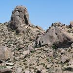 Tom's Thumb - McDowell Sonoran Preserve thumbnail