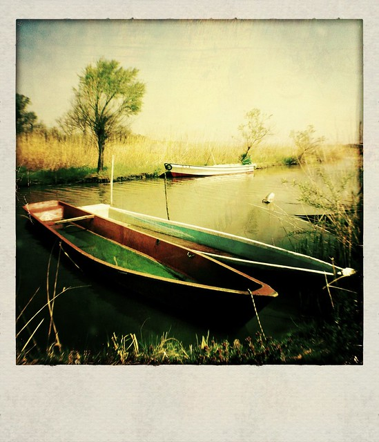Twin boat
