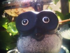 owl friend :) (fervus) Tags: camera color digital lens toy mod quality fine ez fx vignette yashica takashi 5mp holgaesque 521 toydigital 12mp ezf521 f521