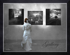 "GALLERY (Mara ~earth light~) Tags: texture nature photoshop gallery expression capture finest elegance the ourtime cityart creativecommon callingallangels blackwhitephotos artdigital contemporaryartsociety romanceintheair photoshopcreativo ""altrafotografia"" artistictreasurechest redmatrix photographymypassion trolledproud mara~earthlight~ artuniinternational magicalbackgroundcompetitionno114"