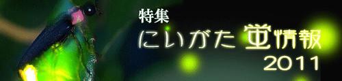 にいがた蛍情報2011/新潟県公式観光情報サイト にいがた観光ナビ