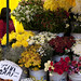 Oltre a frutta e verdura anche fiori al mercado (Valparaiso)