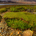 Loch Slapin (2)