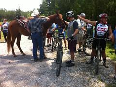 Horses and Bikes
