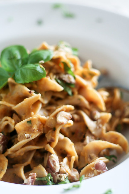 Close-up on Creamy Pumpkin and Chestnut Pasta