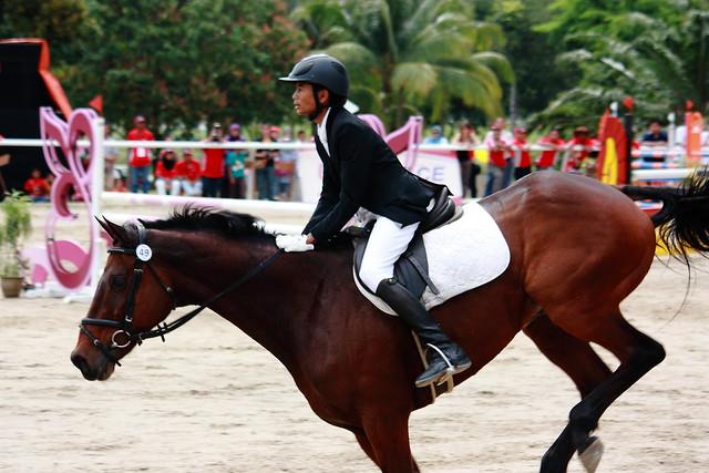 Horseshow_11
