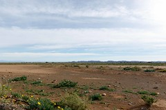 Empty Space with blue clouds in Tankwa Karoo (markdescande) Tags: africa wind dry natural cape nature dawn south background karoo road outside geology gannaga african sky environment valley stone path grass scenic landscape sunset tankwa twist rises fog eastern outdoor clouds arid desert dusk gravel sun blue ravine rock geological pass cloud sunrise mist wild park nobody misty national mountain
