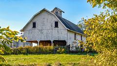 A Gambrel Barn (myoldpostcards) Tags: rural country farm buildings farmstead farming gambrel barn bluegrass road rd morgancounty centralillinois illinois il unitedstates myoldpostcards vonliski season fall autumn agambrelbarn