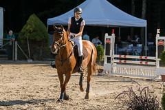 DSC02288_s (AndiP66) Tags: aespli derby hindelbank springen 2016 pferd horse schweiz switzerland kantonbern cantonberne concours wettbewerb horsejumping springreiten pferdespringen equestrian sports pferdesport sport martinameyer grueb wolhusen luzern sony sonyalpha 77markii 77ii 77m2 a77ii alpha ilca77m2 slta77ii sony70400mm f456 sony70400mmf456gssmii sal70400g2 andreaspeters bern ch september