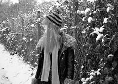Winter Wonderland (amycaek) Tags: snowflake christmas pink autumn trees winter woman snow cold tree wool nature girl beautiful hat rain weather lady scarf hair fur spring women long pretty snowy longhair woollyhat gloves snowing wooly wonderland pinkhair winterwonderland woolly