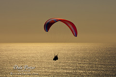 IMG_303_Paraglider_201103