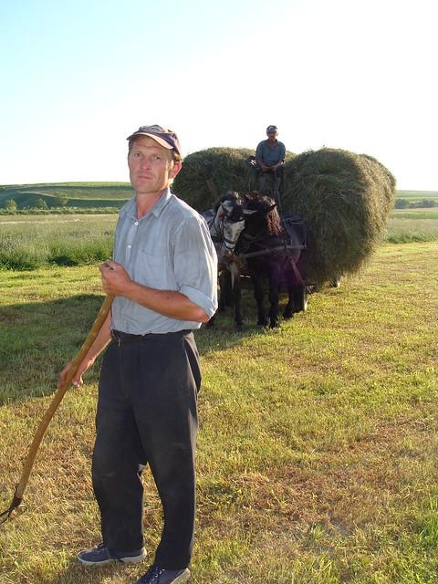 Bringing in the hay - Transylvania