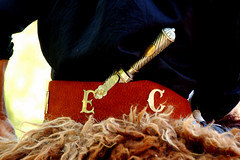 El cabo 'e plata (Eduardo Amorim) Tags: costumes southamerica argentina leather silver belt knife messer plata cinto gauchos pampa artesana carpincho craftsmanship capivara gaucho prata cintura silber faca cuero amricadosul argento ceinture cuir couteau gacho amriquedusud provinciadebuenosaires coltello grtel gachos couro sudamrica sanantoniodeareco cuoio suramrica amricadelsur areco sdamerika pelego pilchas facn pilchasgauchas indumentria rastra pampaargentina americadelsud capincho americameridionale eduardoamorim cojinillo iayayam yamaiay pampaargentino