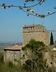 Stigliano - Poggiarello (anto_gal) Tags: torre siena toscana castello borgo medievale stigliano 2011 sovicille poggiarello
