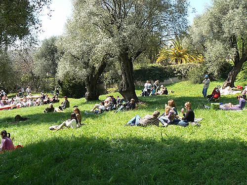 sieste sous les oliviers.jpg