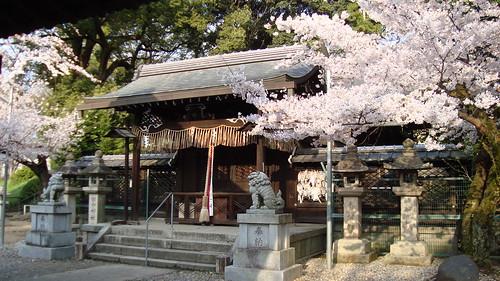 2011/04 許波多神社 #01