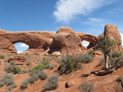 North and South Window Arches (Patricia Henschen) Tags: utah moab archesnationalpark northandsouthwindowarches