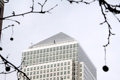 Flying high (squiggleslash) Tags: building bird silhouette flying onecanadasquare