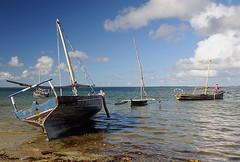 Mafia Island Boat 3