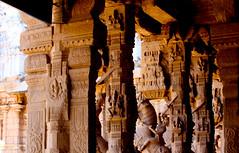 Srirangam Ranganathaswamy temple IMG_2040.jpg (opalpeterliu) Tags: trip india temple 02 srirangam 2011 ranganathaswamy